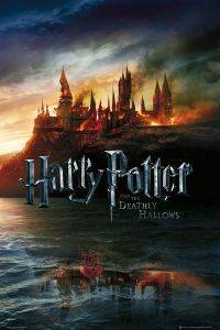 POSTER HARRY POTTER 61 X 91.5 CM