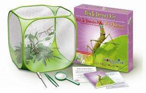 WORLD ALIVE STICK INSECT KIT