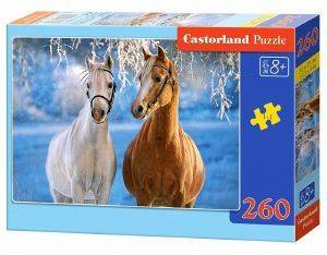 THE WINTER HORSES CASTORLAND 260 ΚΟΜΜΑΤΙΑ