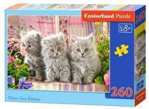 THREE GREY KITTENS CASTORLAND 260 ΚΟΜΜΑΤΙΑ