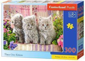 THREE GREY KITTENS CASTORLAND 300 ΚΟΜΜΑΤΙΑ