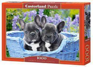 FRENCH BULLDOG PUPPIES CASTORLAND 1000 ΚΟΜΜΑΤΙΑ