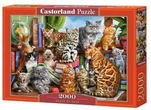 HOUSE OF CATS CASTORLAND 2000 ΚΟΜΜΑΤΙΑ