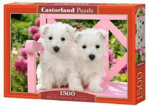 WHITE TERRIER PUPPIES CASTORLAND 1500 ΚΟΜΜΑΤΙΑ