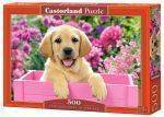 PUZZLES 500 - LABRADOR PUPPY IN PINK BOX CASTORLAND 500 ΚΟΜΜΑΤΙΑ
