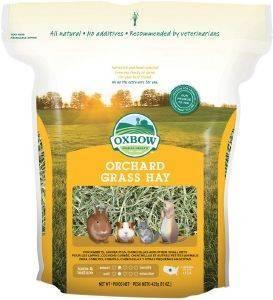 ΧΟΡΤΟ ΓΙΑ ΤΡΩΚΤΙΚΑ OXBOW ORCHARD GRASS HAY 425GR pet shop τρωκτικο τροφεσ 100 500 γραμ
