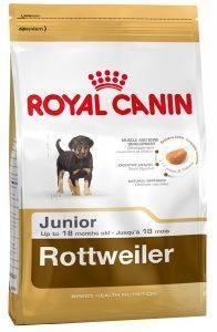 ΤΡΟΦΗ ΣΚΥΛΟΥ ROYAL CANIN ROTTWEILER JUNIOR 3KG pet shop σκυλοσ ξηρη τροφη puppy εωσ 2 ετων