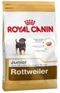 ΤΡΟΦΗ ΣΚΥΛΟΥ ROYAL CANIN ROTTWEILER JUNIOR 12KG pet shop σκυλοσ ξηρη τροφη puppy εωσ 2 ετων