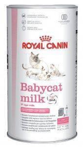 ΓΑΛΑ ΣΕ ΣΚΟΝΗ ROYAL CANIN BABYCAT MILK 300GR pet shop γατα ξηρη τροφη συμπληρωματα διατροφησ