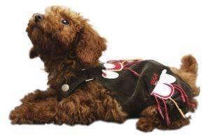 PETSLAND ΠΑΝΤΕΛΟΝΙ ΜΕ ΤΙΡΑΝΤΕΣ XSMALL pet shop σκυλοσ ενδυση φορεματα