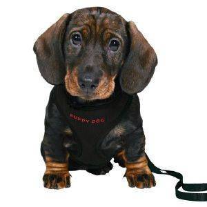 ΣΑΜΑΡΑΚΙ ΚΑΙ ΟΔΗΓΟΣ TRIXIE ΓΙΑ ΚΟΥΤΑΒΙΑ ΜΑΥΡΟΣ pet shop σκυλοσ περιλαιμια οδηγοι σαμαρακια