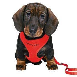ΣΑΜΑΡΑΚΙ ΚΑΙ ΟΔΗΓΟΣ TRIXIE ΓΙΑ ΚΟΥΤΑΒΙΑ ΚΟΚΚΙΝΟΣ pet shop σκυλοσ περιλαιμια οδηγοι σαμαρακια