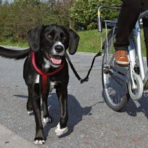 ΕΚΠΑΙΔΕΥΤΙΚΟΣ ΟΔΗΓΟΣ ΠΟΔΗΛΑΤΟΥ TRIXIE pet shop σκυλοσ εκπαιδευση οδηγοι