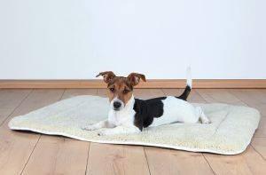 ΣΤΡΩΜΑ TRIXIE DORIEN ΚΡΕΜ ΜΑΥΡΟ 95X68CM pet shop σκυλοσ στρωματα κρεβατια στρωματα
