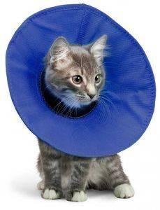 ΠΡΟΣΤΑΤΕΥΤΙΚΟ ΚΟΛΑΡΟ KVP ΕΛΙΣΑΒΕΤΙΑΝΟ EZ SOFT XS pet shop γατα υγιεινη ασφαλεια προστασια