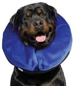 ΠΡΟΣΤΑΤΕΥΤΙΚΟ ΚΟΛΑΡΟ KVP ΕΛΙΣΑΒΕΤΙΑΝΟ KONG CLOUD ΦΟΥΣΚΩΤΟ L pet shop σκυλοσ ασφαλεια πρωτεσ βοηθειεσ