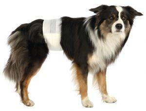 ΠΑΝΕΣ TRIXIE ΓΙΑ ΑΡΣΕΝΙΚΟΥΣ ΣΚΥΛΟΥΣ M/L (12TMX) pet shop σκυλοσ υγιεινη περιποιηση τουαλετα